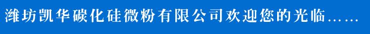 公si简介